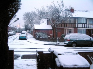 Project 365, Day 9 - It Snowed!