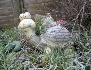 Tortoise in Frosty Surroundings