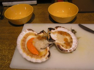 Scallop in a Half-Shell