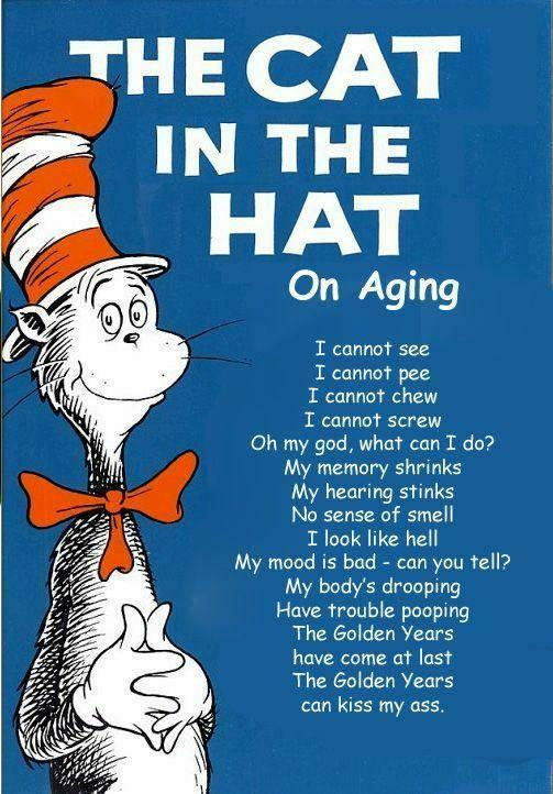 cat in hat hat. The Cat In The Hat Says…